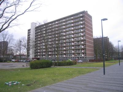 DAI-Delft image32